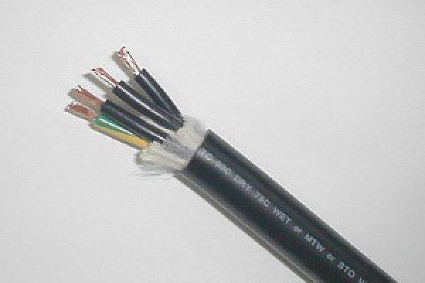 画像1: CE/STO/TC(N) (1)