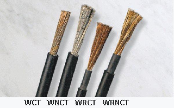 画像1: WCT (1)